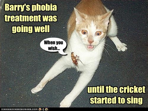 afraid,caption,captioned,cat,cricket,going well,jiminy cricket,phobia,sing,singing,song,started,tabby,treatment,until