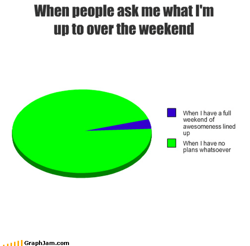 loser Pie Chart plans weekend