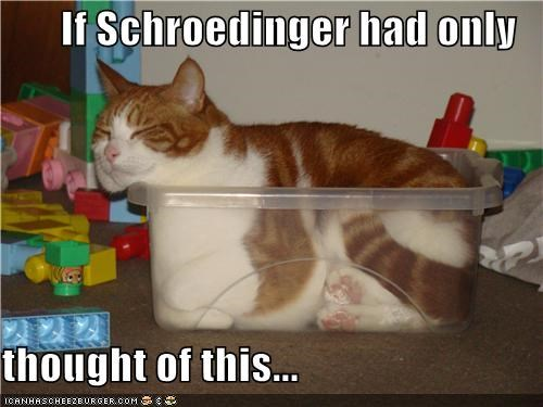 Cheezburger Image 4774217472