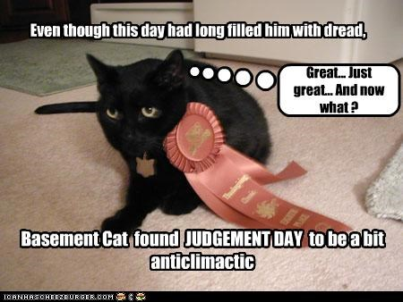 Even though this day had long filled him with dread, Basement Cat found JUDGEMENT DAY to be a bit anticlimactic Great... Just great... And now what ?