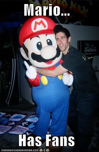 fan,mario,nintendo,video games