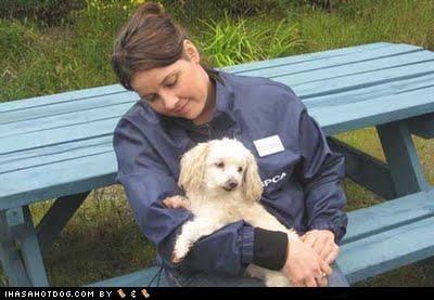 carried dropped eagle news poodle - 4774480384