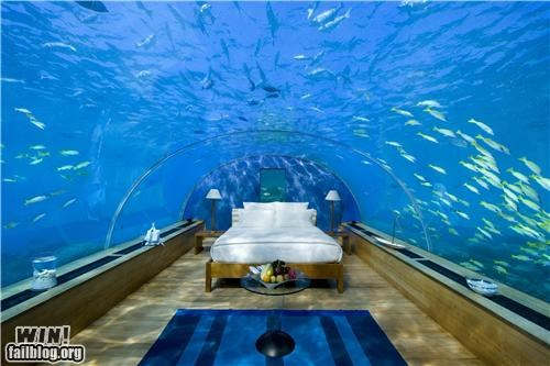 awesome,bed,bedrooms,design,furniture,underwater