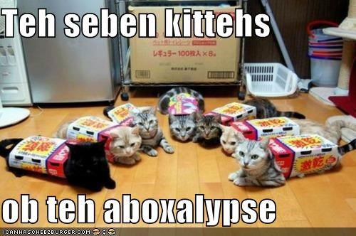apocalypse,box,boxes,caption,captioned,cat,Cats,pun,seven,sitting