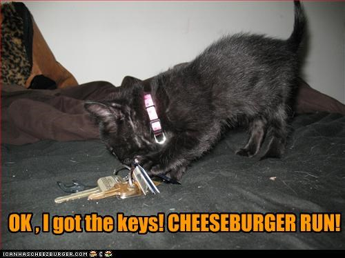 Cheezburger Image 4777228032