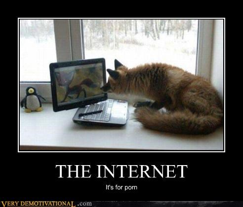 THE INTERNET It's for porn