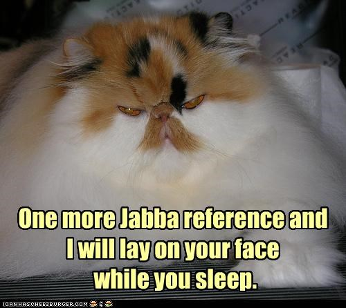 caption,captioned,cat,face,jabba,Jabba the Hut,lay,more,one,reference,referring,sleep,star wars,suffocation,threat,weight