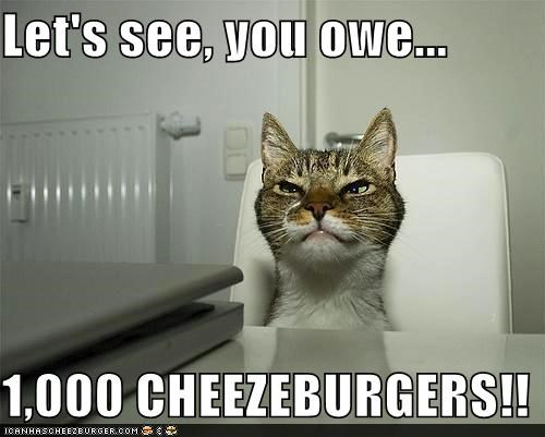 Cheezburger Image 4778141952
