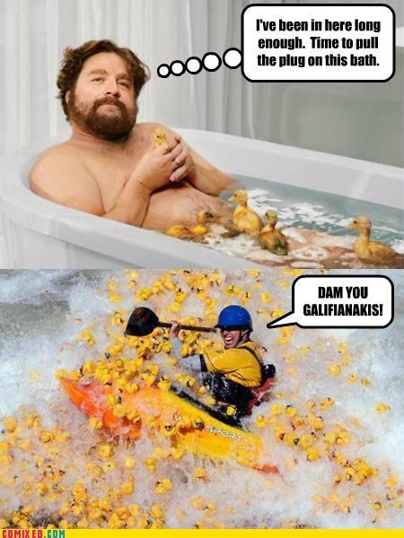 ducks rubber ducks the internets wtf Zach Galifianakis