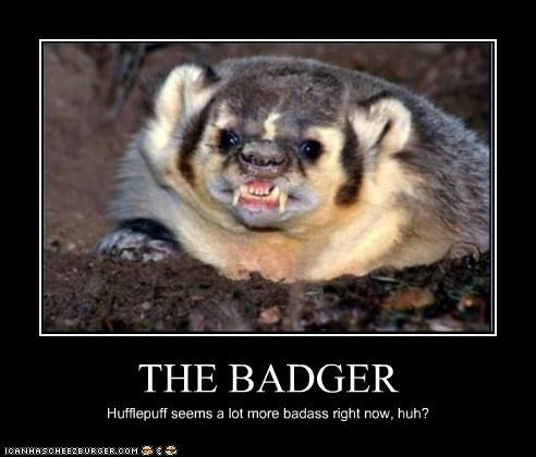 THE BADGER Hufflepuff seems a lot more badass right now, huh?