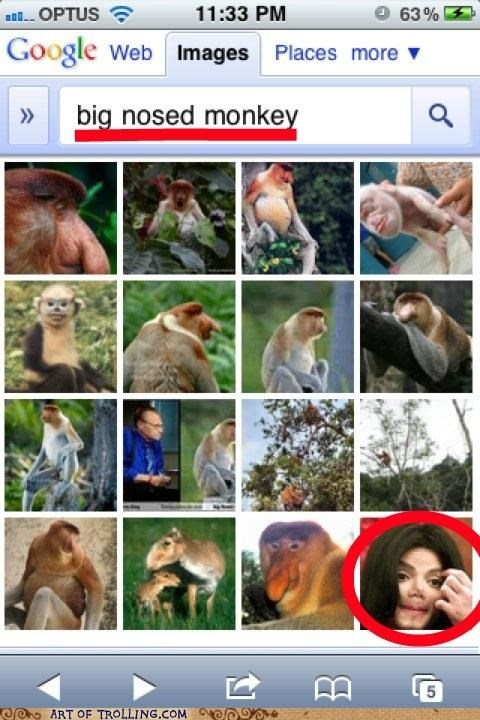 google,michael jackson,monkeys,noses