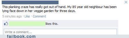 Planking a New Garden