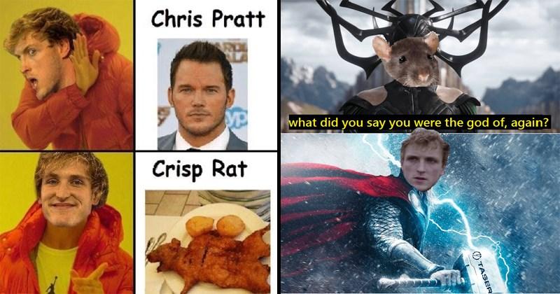 Funny memes about Logan Paul tazing rats.