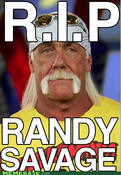 Hulk Hogan randy savage rip - 4780677632