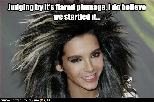 Bill Kaulitz celeb funny Music - 4781456128