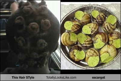 escargot food hair snails