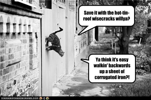 Save it with the hot-tin-roof wisecracks willya? Ya think it's easy walkin' backwards up a sheet of corrugated iron?!