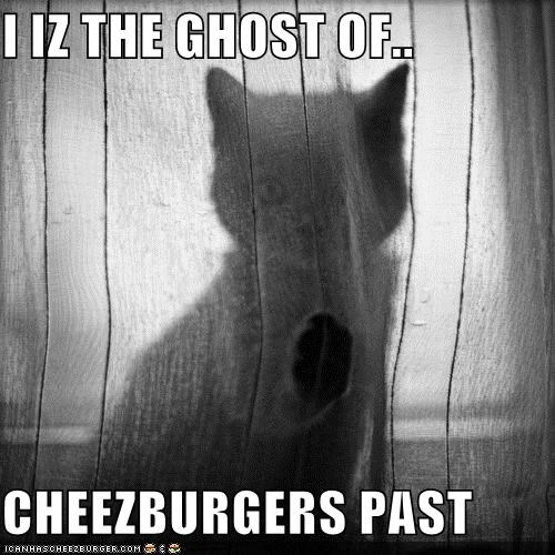 Cheezburger Image 4783246080