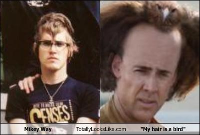 actors Memes mikey way musicians my chemical romance my hair is a bird nicholas cage - 4783717632