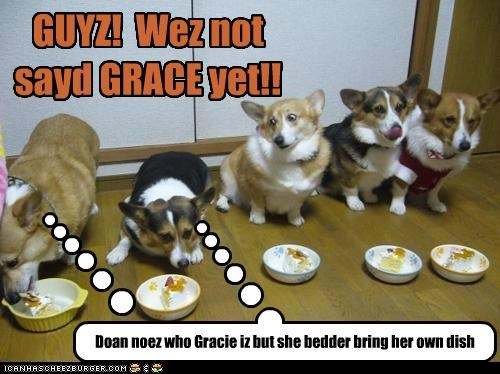 GUYZ! Wez not sayd GRACE yet!! Cleverness Here Doan noez who Gracie iz but she bedder bring her own dish