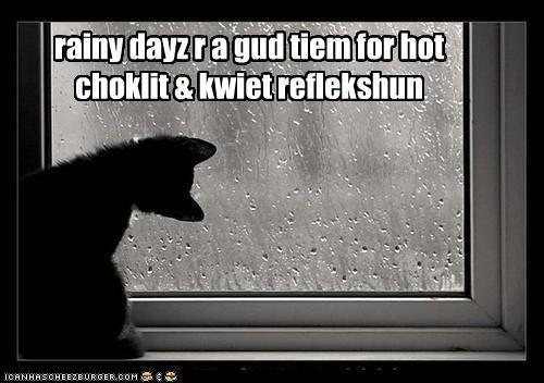 rainy dayz r a gud tiem for hot choklit & kwiet reflekshun