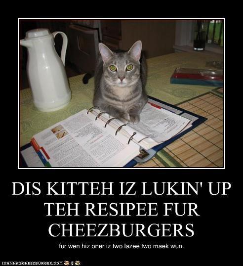 Cheezburger Image 4785167104