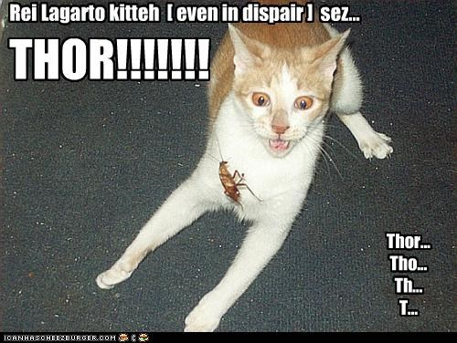 THOR!!!!!!! Thor... Tho... Th... T... ... Rei Lagarto kitteh [ even in dispair ] sez...