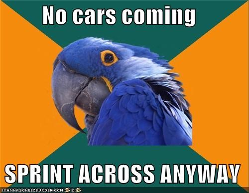 cars,invisible,Paranoid Parrot,sprint,street