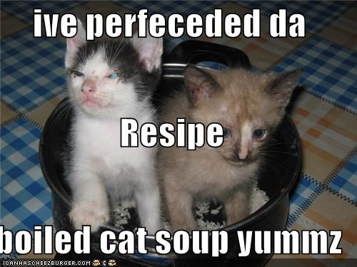 ive perfeceded da Resipe boiled cat soup yummz - I Can Has