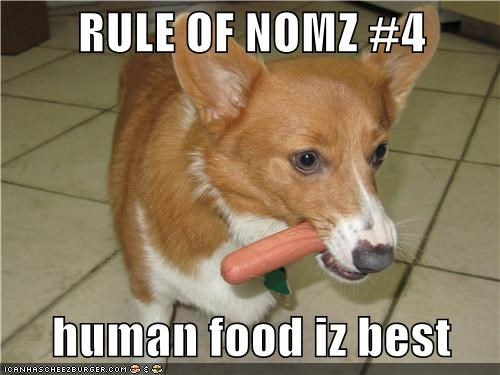 RULE OF NOMZ #4 human food iz best