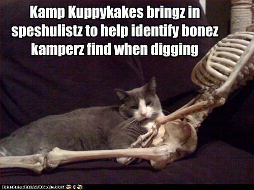 Kamp Kuppykakes bringz in speshulistz to help identify bonez kamperz find when digging