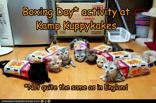 Boxing Day* activity at Kamp Kuppykakes *Not quite the same as in England