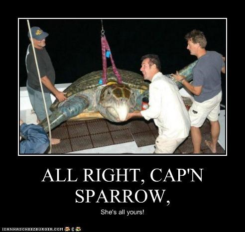 ALL RIGHT, CAP'N SPARROW, She's all yours!