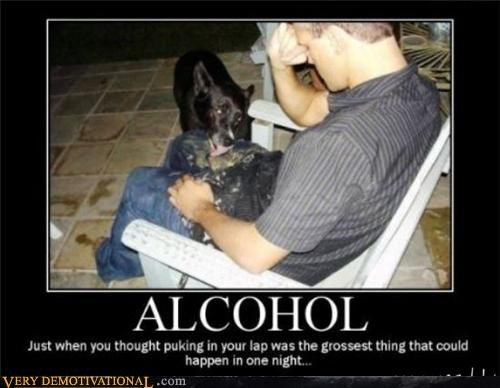 alcohol dogs gross Terrifying vomit wtf