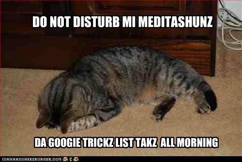 DO NOT DISTURB MI MEDITASHUNZ DA GOOGIE TRICKZ LIST TAKZ ALL MORNING
