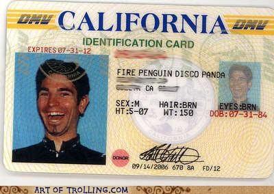 identification card IRL mclovin names - 4791419136