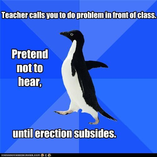 class,erection,school,socially awkward penguin,woody