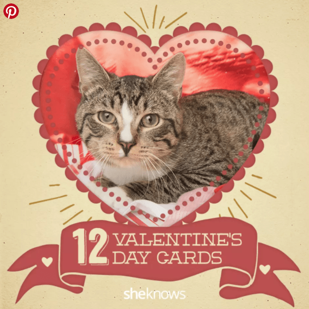 cards Cats Valentines day - 4792069