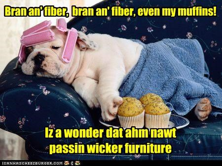 Bran an' fiber, bran an' fiber, even my muffins! Iz a wonder dat ahm nawt passin wicker furniture