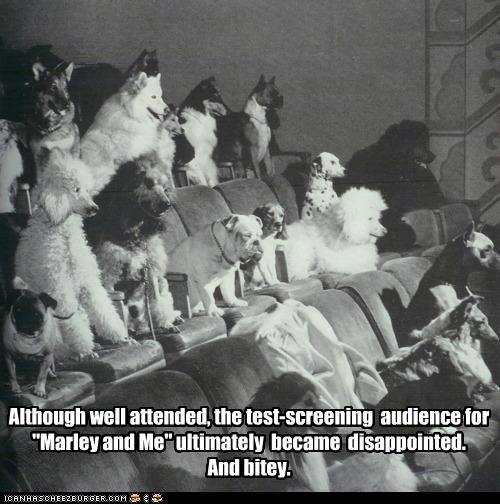 "Although well attended, the test-screening audience for ""Marley and Me"" ultimately became disappointed. And bitey."
