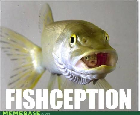 animemes,fish,hook,Inception,line,sinker,within a