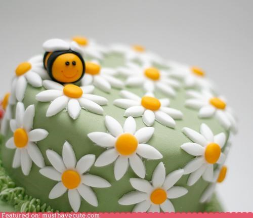 bee,cake,daisies,epicute,flowers,fondant,spring time,sweet