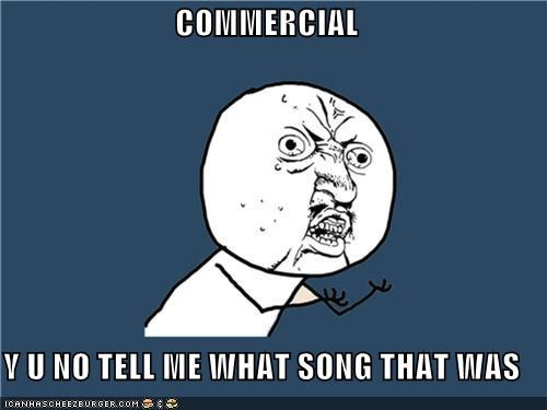 commercial,lyrics,Songs,television,Y U No Guy