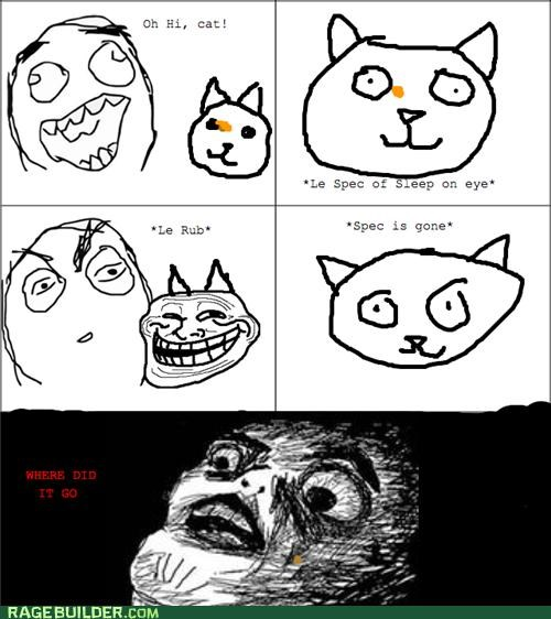 cat eyes gross Rage Comics sleep - 4795225344