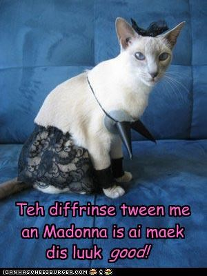 Teh diffrinse tween me an Madonna is ai maek dis luuk good!