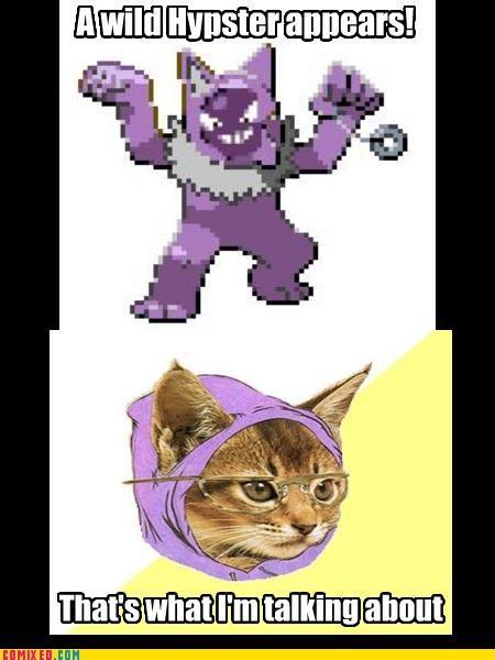 hipster hipster cat Pokémon the internets - 4796755968