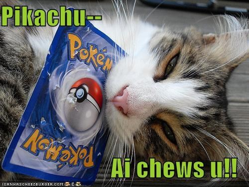 caption,captioned,cat,chew,chews,choose,homophone,i choose you,pikachu,Pokémon,pokémon card,pun