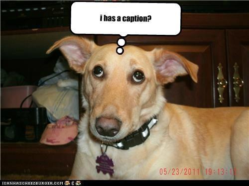 i has a caption?