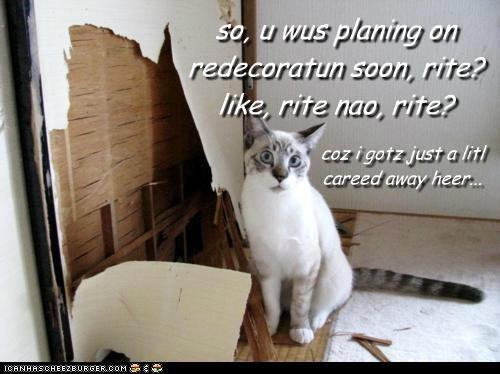 so, u wus planing on redecoratun soon, rite? like, rite nao, rite? coz i gotz just a litl careed away heer...