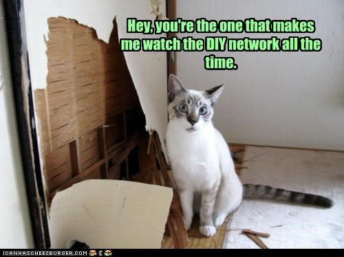 Hey, you're the one that makes me watch the DIY network all the time.